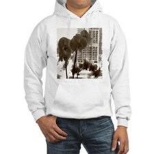 Chicago Hoodie