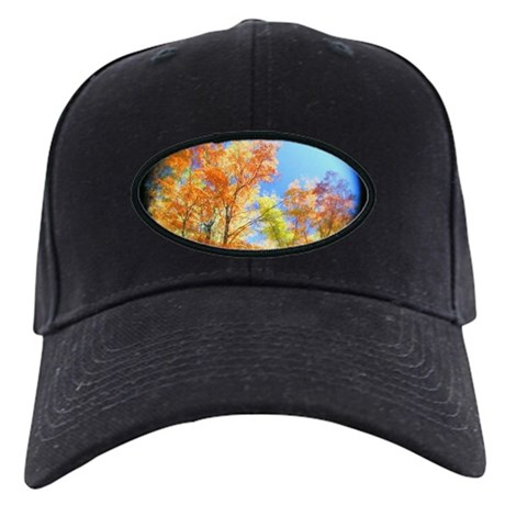 Fall Colors Tree View Black Cap