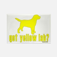 got yellow lab? Rectangle Magnet (10 pack)