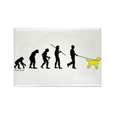Yellow Lab Evolution Rectangle Magnet (100 pack)