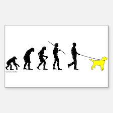 Yellow Lab Evolution Rectangle Sticker 10 pk)