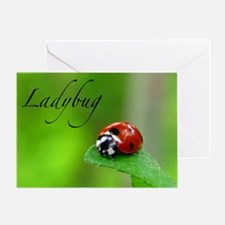 Red Lady Bug Greeting Card