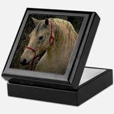Arabian Mare Keepsake box