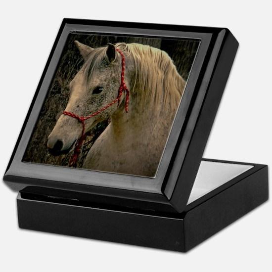 Arabian Mare Keepsake box