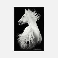 White Kladruby Stallion Rectangle Magnet