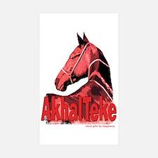 AkhalTeke Rectangle Sticker 10 pk)
