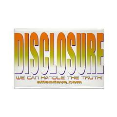 Disclosure Rectangle Magnet