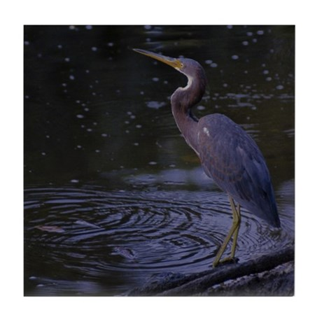 Little Blue Heron at Daylight -Tile Coaster