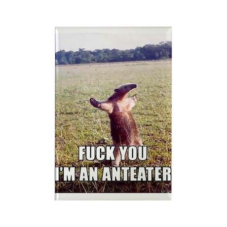 Animal Prints Rectangle Magnet (100 pack)