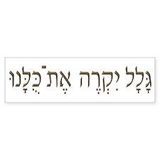 Sh*t Happens (Hebrew) Bumper Bumper Sticker