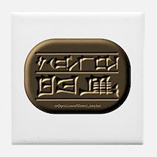 Sh*t Happens (Sumerian) Tile Coaster