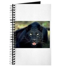 Cool Panther Journal