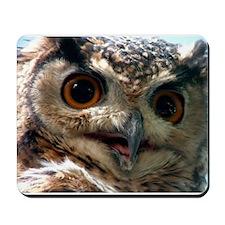 Mysterious Owl! Mousepad