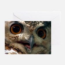 Mysterious Owl! Greeting Cards (Pk of 10)