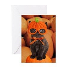 Pumpkin Kitten Halloween Greeting Card