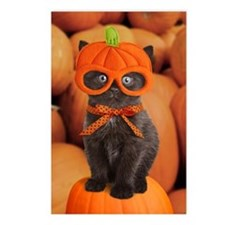 Pumpkin Kitten Halloween Postcards (Package of 8)