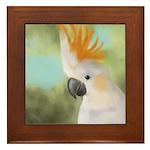 Citron Crested Cockatoo Framed Tile
