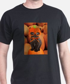 Pumpkin Kitten Halloween T-Shirt