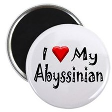 Love My Abyssinian Magnet