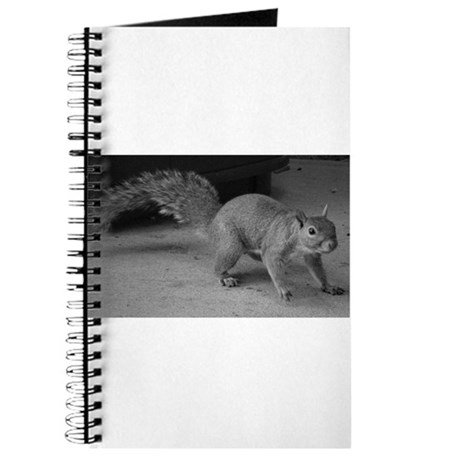 Squirrel Close Up Journal