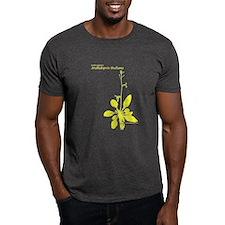 arabidopsis-thaliana-allYLLW T-Shirt
