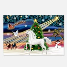 XmsMagic/Horse (Ar-W) Postcards (Package of 8)
