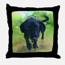 Thiba Comin' Through Throw Pillow