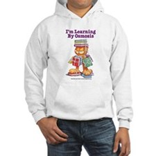 Garfield Learning by Osmosis Jumper Hoody
