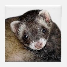 Cute Ferret Face Tile Coaster