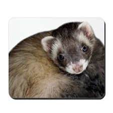Cute Ferret Face Mousepad