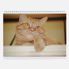 Orange Tabby Cat Wall Calendar