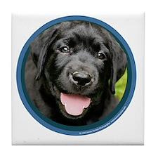 Black Lab Puppy Tile Coaster