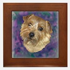 """Norfolk Terrier """"Sassy"""" Framed Tile"""