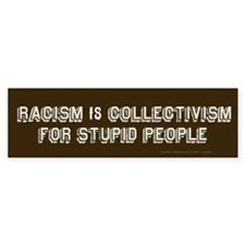 Racism is Stupid Bumper Bumper Sticker
