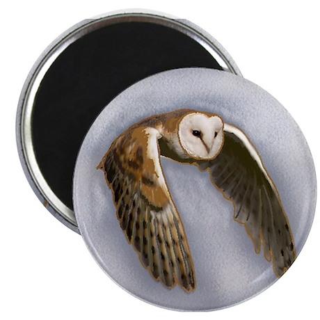 Barn Owl in flight Magnet