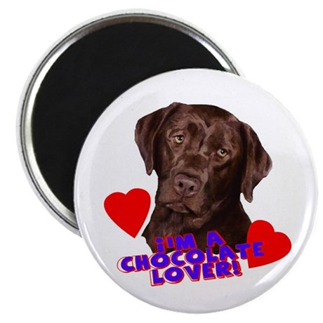 chocolate lover lab Magnet