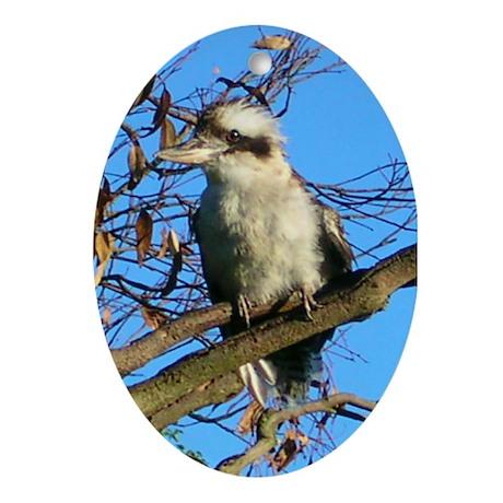 Kookaburra In Gum Tree Oval Ornament