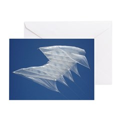 White Sutton Greeting Cards (Pk of 20)