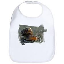 Snail 1 Bib