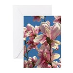 Spring Greeting Cards (Pk of 10)