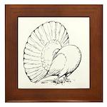 Fantail Pigeon Framed Tile