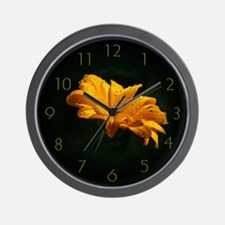 Daisy with raindrops Wall Clock