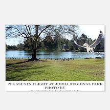 Jorba Pegasus Postcards (Package of 8)