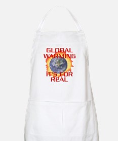 Global Warming Its for Real BBQ Apron