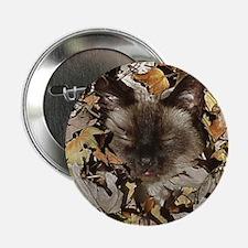 Siamese Kitty Button