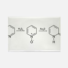 2-Pyridone Chemical Synthesis Rectangle Magnet
