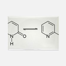 2-Pyridone Chemical Tautomer Rectangle Magnet