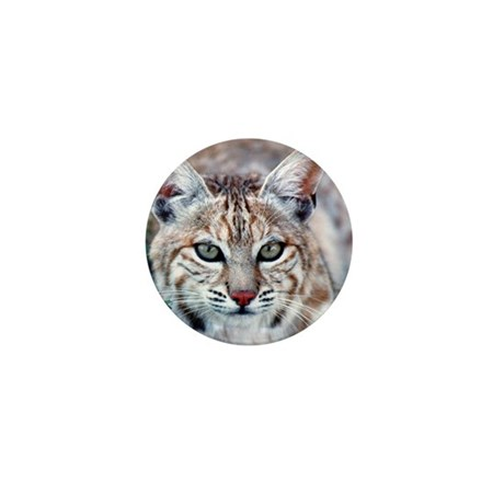 Bobcat Mini Button (100 pack)