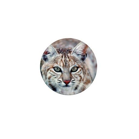 Bobcat Mini Button