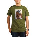 Addison Organic Men's T-Shirt (dark)